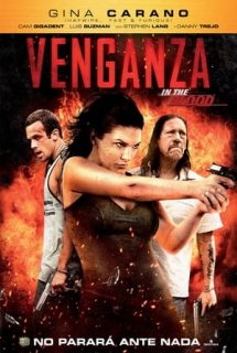 Venganza in the blood spanish66 poster.jpg